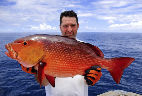 A fisherman showing his catched redsnapper