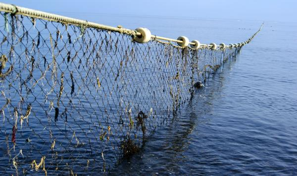 Fishing Net Was Tied Up For Fishing In The Deep Sea