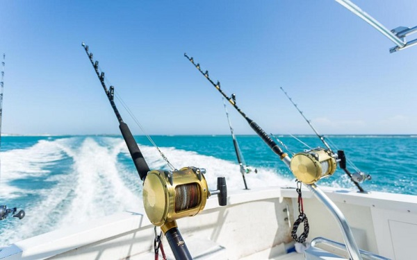A Set Of Fishing Rod & Reels In The Ocean Fishing.