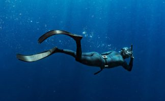 A Spearfisher Swims In The Blue Sea.